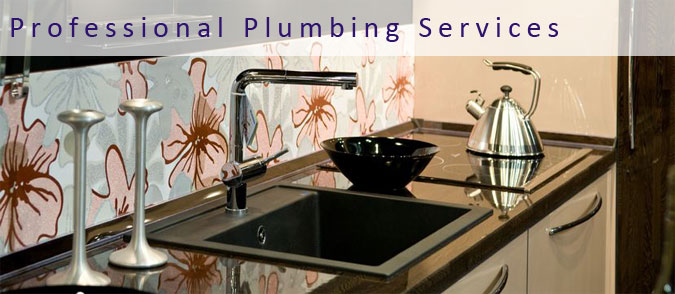 We offer Professional Plumbing Services